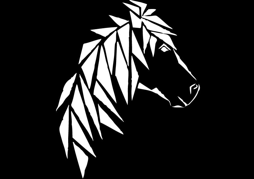 Buitenritten Stal Edda Ijsland Paarden Paardrijden