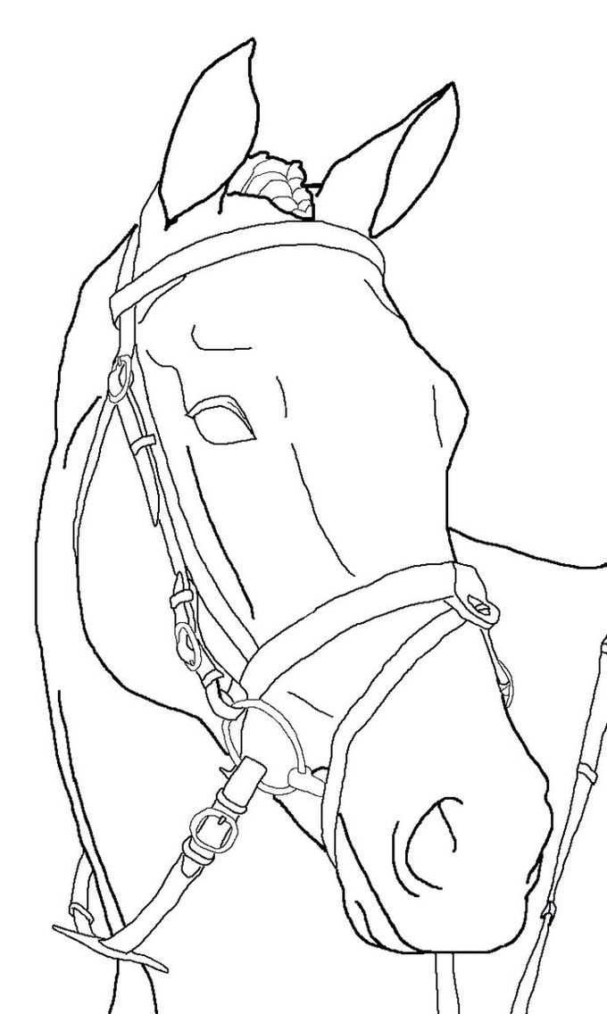 Horse Coloring Pages Horse Art Drawing Horse Drawings Horse Sketch