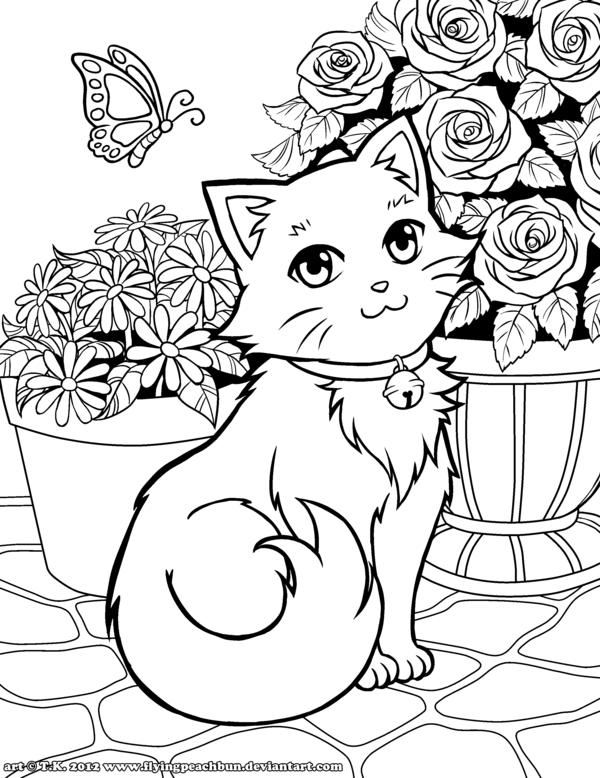 Pin Op Kleurplaten Katten En Honden