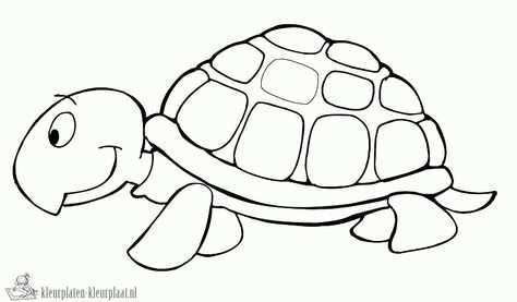 Http Www Kleurplaten Kleurplaat Nl Kleurplaten Schildpad 20896 Schildpad Kleurplaat Gif Schildpad Tekening Dieren Kleurplaten Schildpad