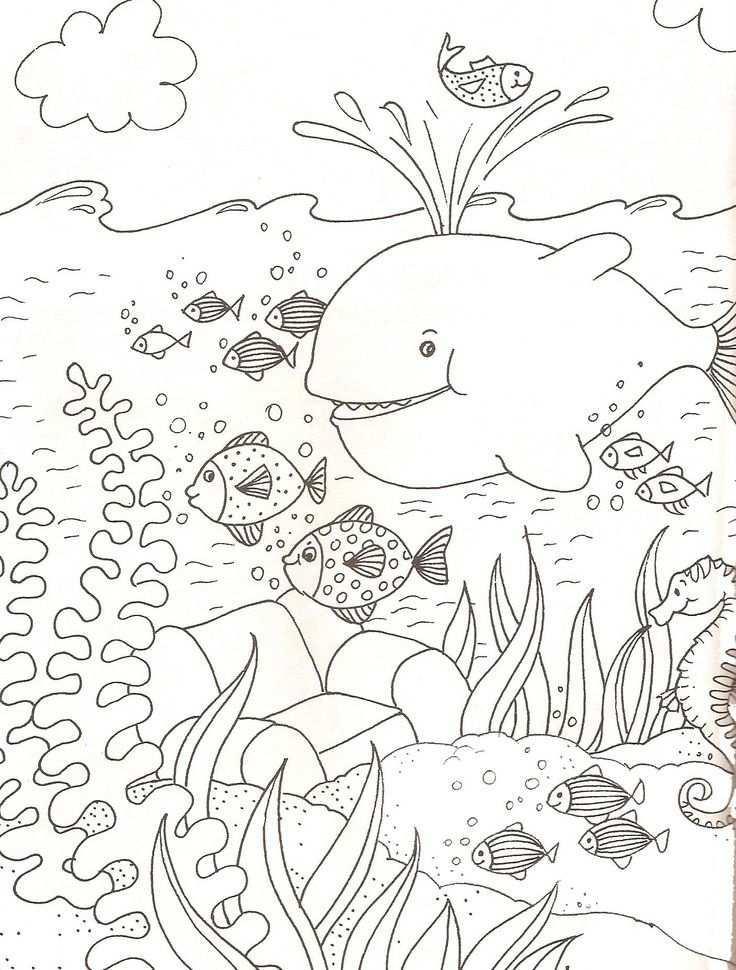 Onderwaterwereld Kleurplaat Google Zoeken Animal Coloring Pages Summer Coloring Pages Under The Sea Drawings
