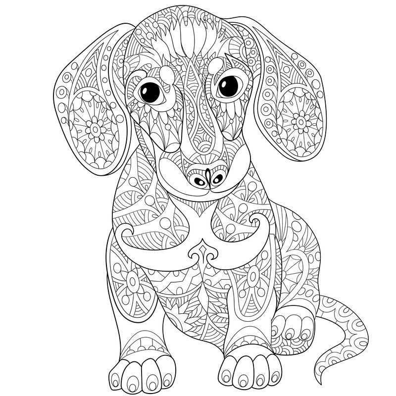 Pin On Adult Colouring Simply Doggies