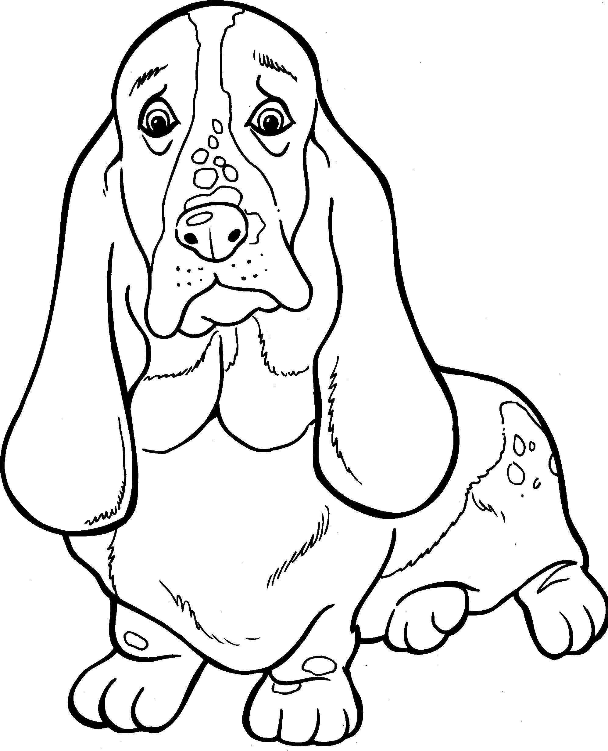 Pin Van Tina Wood Op My Saves In 2020 Honden Dieren Kleurplaten Hond Tekeningen