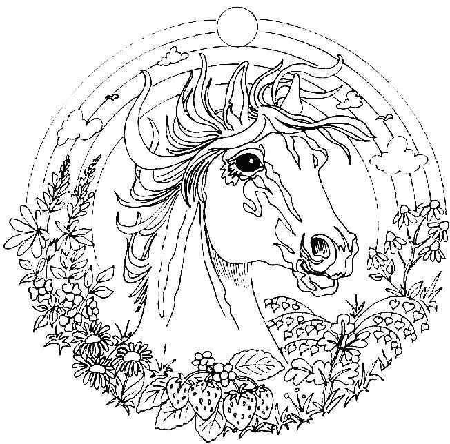 Mozaiek Patroon Mandala Paard Horse Coloring Pages Unicorn Coloring Pages Animal Coloring Pages