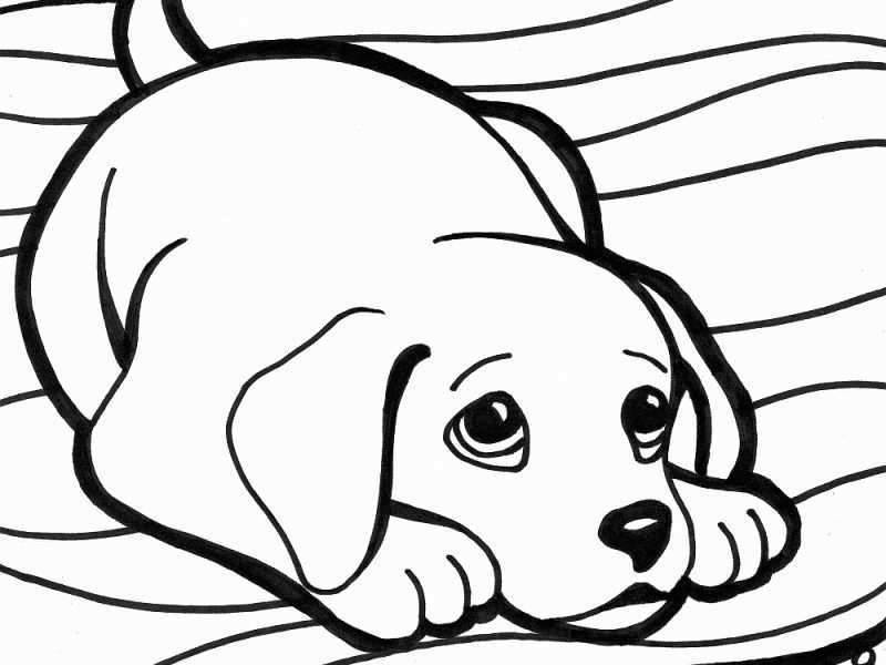 Baby Dogs Coloring Pages Unique Cool Dog Coloring Pages