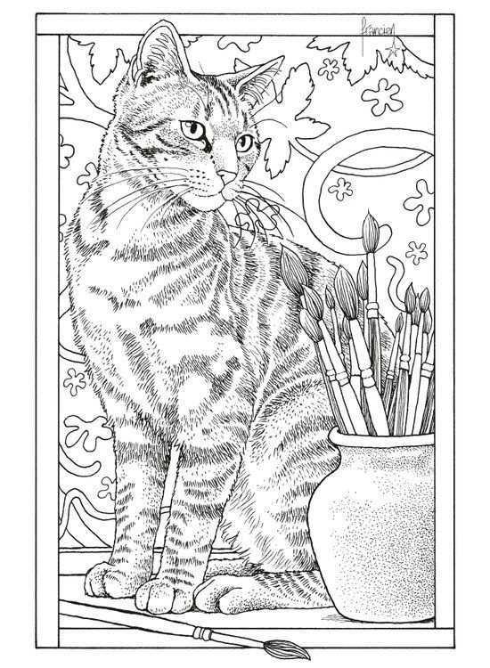 Franciens Katten Kleurboek Om Te Versturen Kleurboek Dieren Kleurplaten Volwassen Kleurboeken