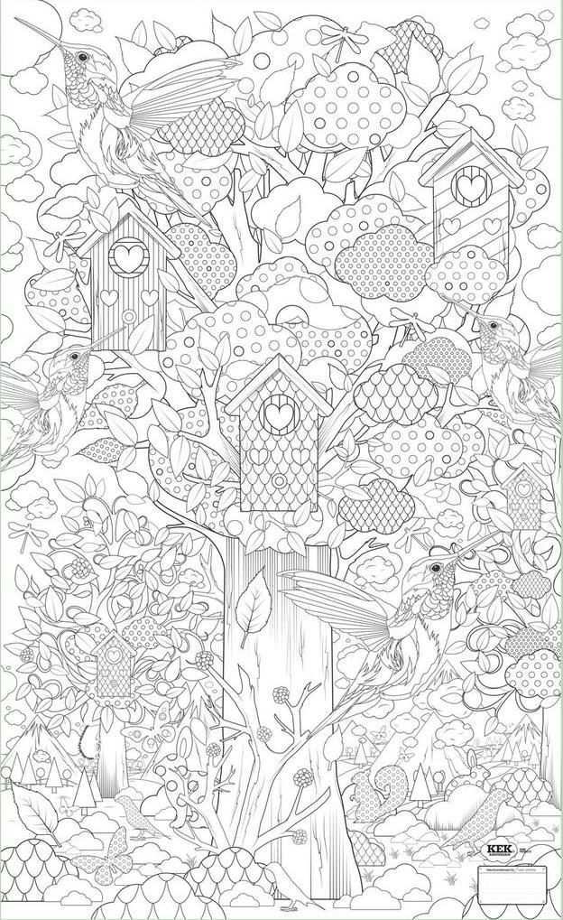 Pin Op Adult Coloring Books
