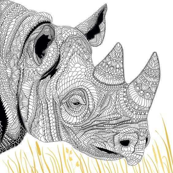 Zwarte Neushoorn Dieren Tekenen Dieren Zentangle Patronen