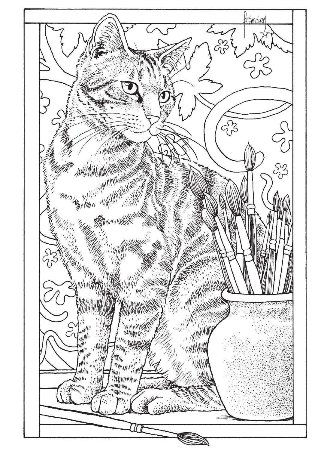 Inkijkexemplaar Franciens Kattenkleurboek Om Te Versturen Francien Van Westering Kleurboek Volwassen Kleurboeken Dieren Kleurplaten
