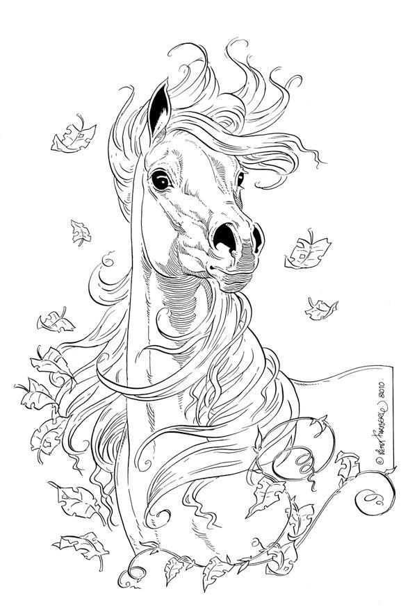 Lovely Horse Drawing Horse Coloring Pages Horse Drawings Animal Coloring Pages