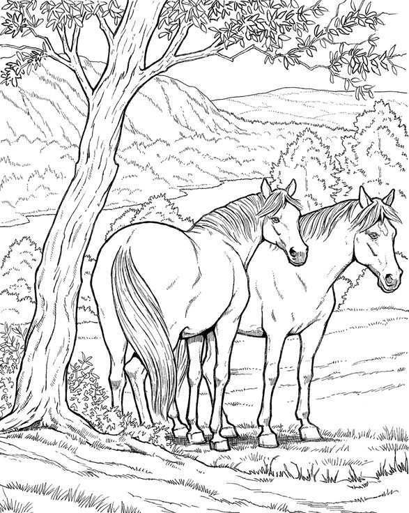 Kleurplaat Van 2 Paarden Onder Een Boom Even Uitrusten In De Schaduw Voordat Ze Weer Verder Gaan Gratis Kleurplaten Dieren Kleurplaten Kleurplaten