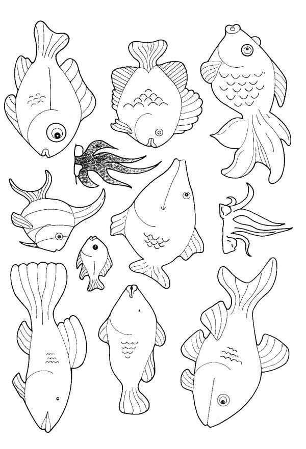 Kids N Fun Kleurplaat Vissen Vissen Dieren Kleurplaten Kleurboek Vissen