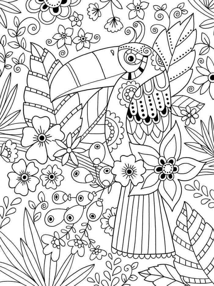 Colouring Toucan Colorir Coloriage Mandala Kleurplaten Kleurplaten Gratis Kleurplaten