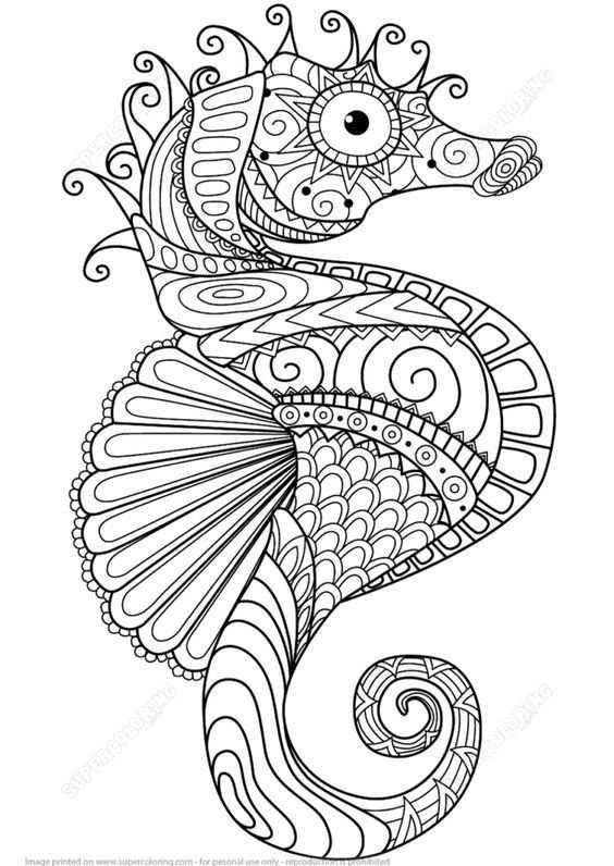 Seahorse Coloring Pages Printable Mandala Kleurplaten Kleurboek Kleurrijke Tekeningen