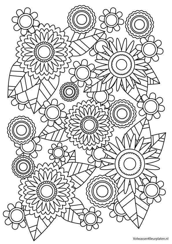 Volwassen Kleurplaat Bloem 1 Volwassen Kleurplaten Kleurplaten Kleurrijke Tekeningen Gratis Kleurplaten
