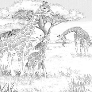 Giraffes Kleurplaat Kleurplaten Dieren Kleurplaten Landschapsschilderijen