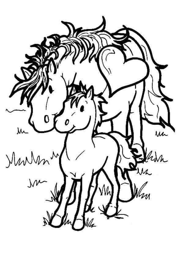 Kids N Fun Kleurplaat Paarden Paarden Dieren Kleurplaten Kinderkleurplaten Boek Bladzijden Kleuren