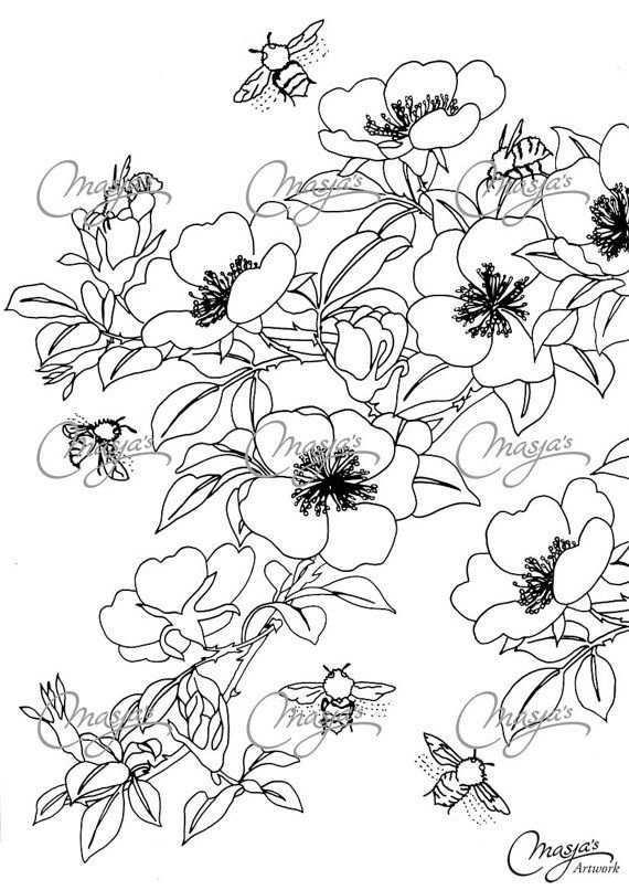 Masja S Honeybees Hand Drawn Coloring Page Kleurplaten Bloemen Tekenen Kleurboek