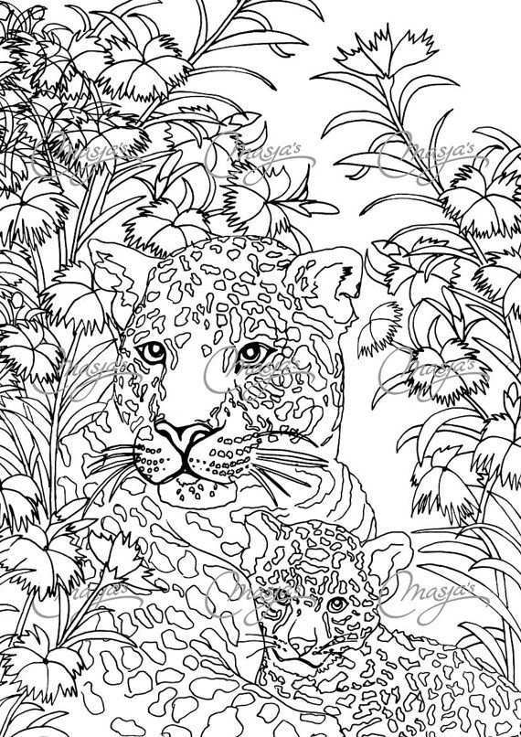 Pin On Adult Colouring Zentangle