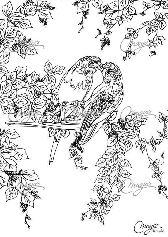 Masja 39 S Lovebirds Hand Drawn Coloring Page Coloring Pages Valentines Day Coloring Page Bird Coloring Pages