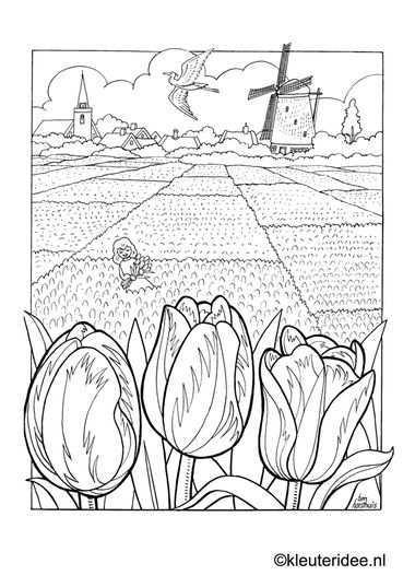 Kleurplaat Bollenvelden Nederland Kleuteridee Nl Dutch Spring Preschool Coloring Kleurplaten Kleuren Prints