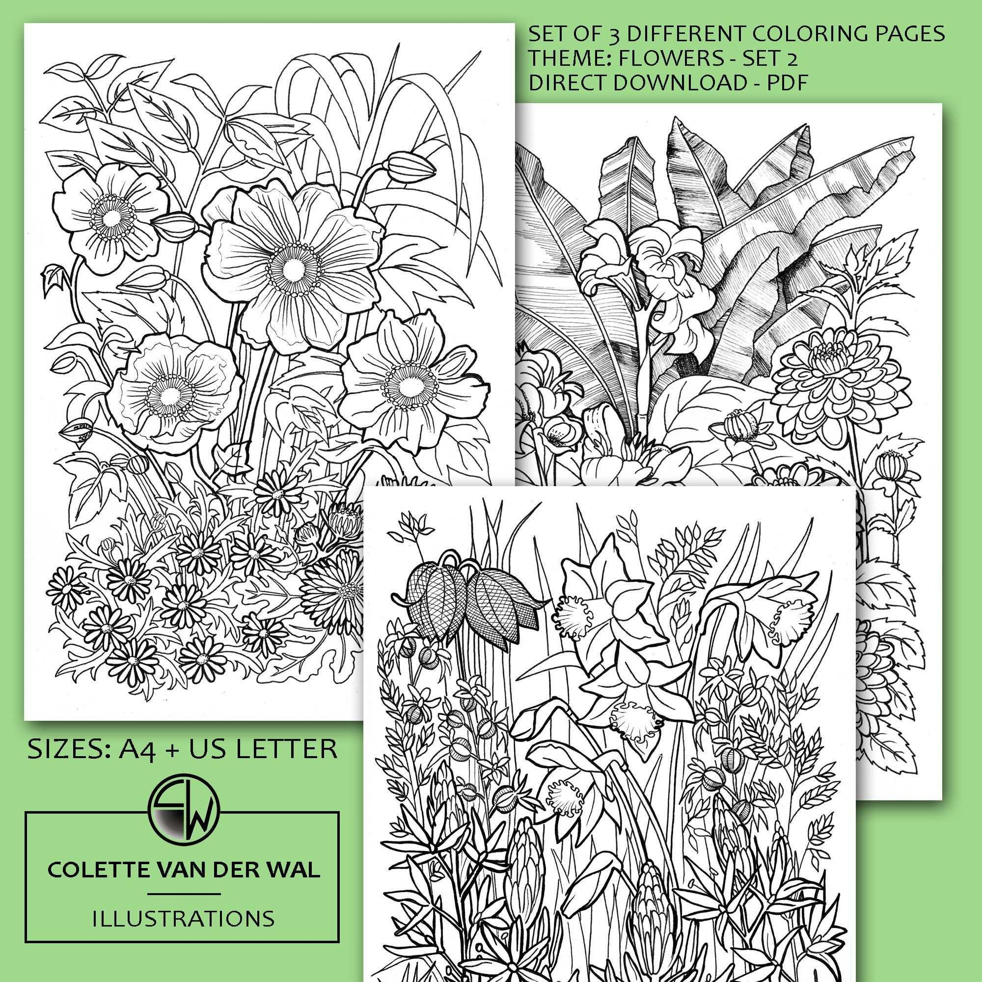 Bloemen Kleurplaten Set 2 Set Van 3 Verschillende Afbeeldingen Handgetekende Illustraties Directe Download Pdf Formaat A4 Usletter In 2020 Coloring Books Coloring Pages Prints