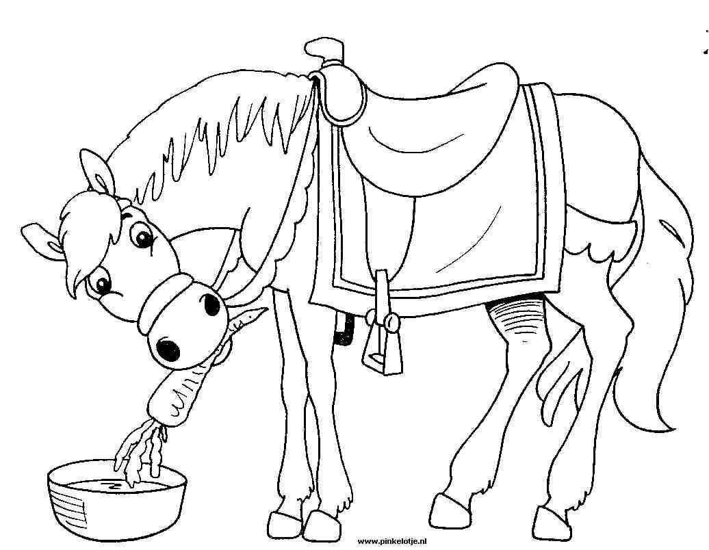 Kleurplaten Sinterklaas Kleurplaten Paard Van Sinterklaas Animaatjes Nl Sinterklaas Kind Tekening Dingen Om Te Tekenen
