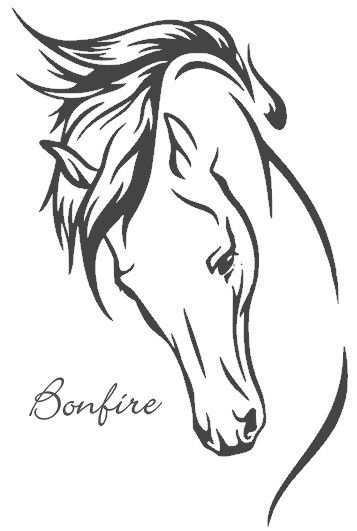 Paardenhoofd Kleurplaat Google Zoeken Paardenhoofd Paard Silhouet Paard Tekeningen