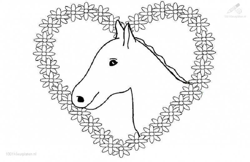 Kleurplaat Van Een Kasteel Paard Tekeningen Kleurplaten Paarden