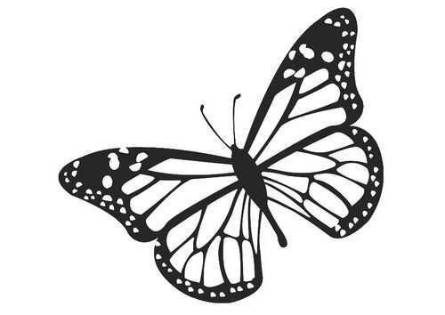 Kleurplaat Vlinder Afb 20674 Gratis Kleurplaten Monarchvlinder Kleurplaten