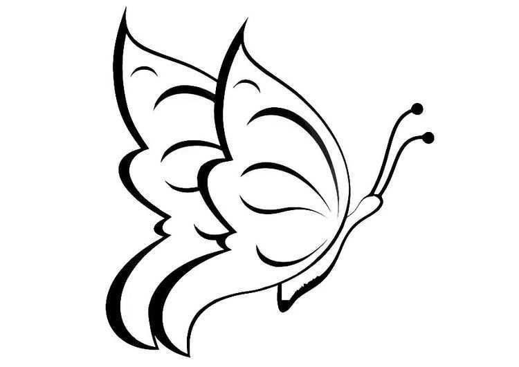 Kleurplaat Vlinder Afb 20668 Dieren Kleurplaten Vlinder Tekening Vlinders