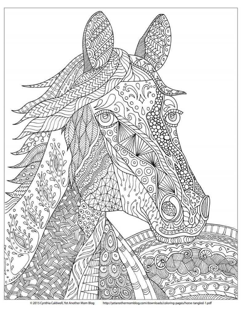 Tien Keer Een Paard Van Sinterklaas Knutselen Doenkids Volwassen Kleurboeken Mandala Kleurplaten Boek Bladzijden Kleuren
