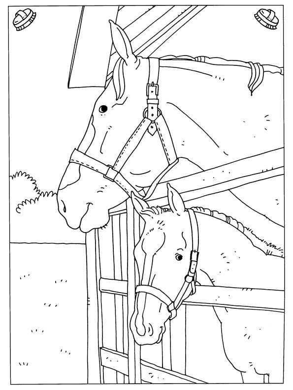 Kids N Fun Kleurplaat Paarden Paarden Kleurplaten Paard Tekeningen Kleurplaten Voor Volwassenen