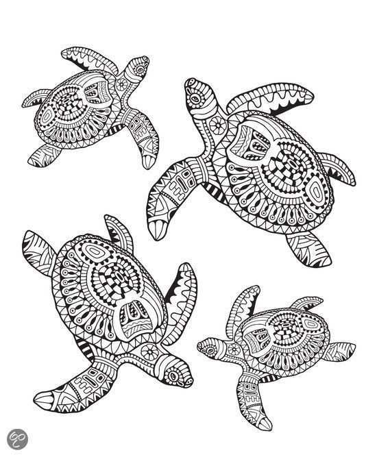 Mindful Kleuren Voor Volwassenen Turtles Bol Com Mindful Coloring For Adults Kwallen Tekening Kleuren Schildpad Tekening