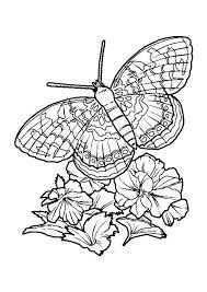 Afbeeldingsresultaat Voor Vlinders En Bloemen Kleurplaten Ausmalbilder Kinder Ausmalbilder Lustige Malvorlagen