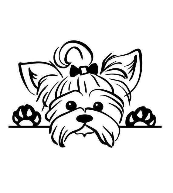 Cute Dogs Panosundaki Pin
