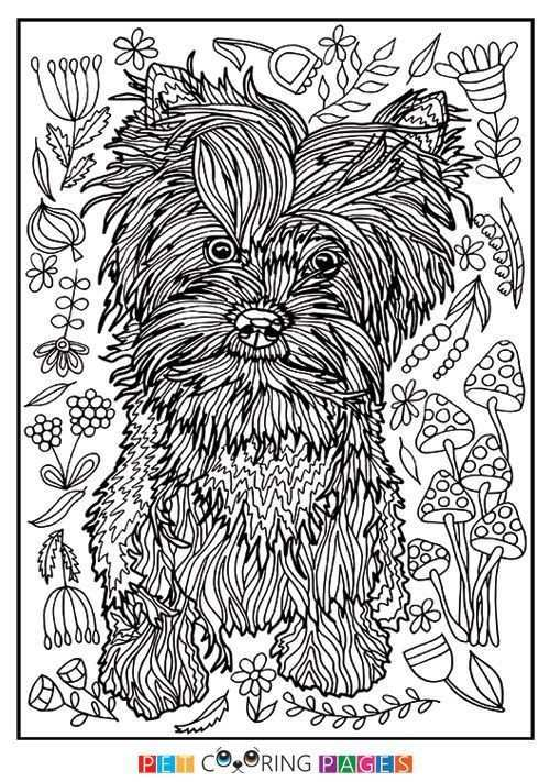 Free Printable Yorkshire Terrier Coloring Page Available For Download Simple And Detailed Versions For Adults And Kids Yorkieadul Kleurplaten Kleuren Honden