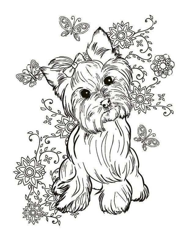 Yorkie Terrier Art Print By Cindy Elsharouni In 2021 Dog Coloring Page Animal Coloring Pages Cute Coloring Pages